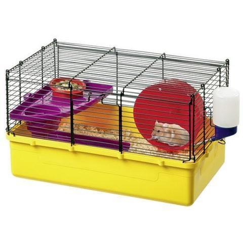 ich habe eine maus gefunden was nun bitte tipps geben tiere biologie natur. Black Bedroom Furniture Sets. Home Design Ideas