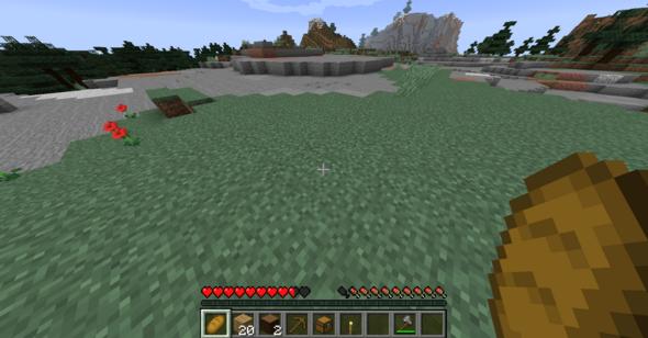 - (Minecraft, Bug, minecraft-fehler)