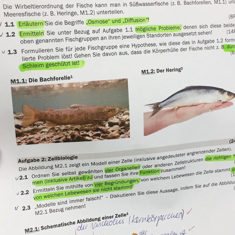 Aufgaben 1.2&1.3 ? - (Biologie, Leistungskurs, Osmose)
