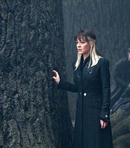 Narcissa Malfoy aus Harry Potter - (Haare, Beauty, färben)