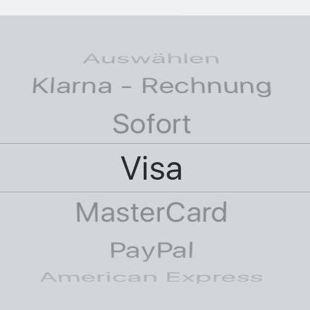 Hier von denen hier welches muss ich auswählen ? - (Internet, Deutschland, PayPal)