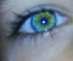 Auge  - (Augen, Farbe)