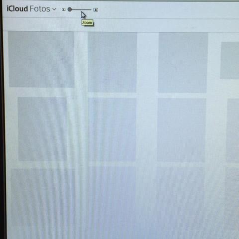 Die Ansicht der Galerie - (Apple, Windows, Browser)