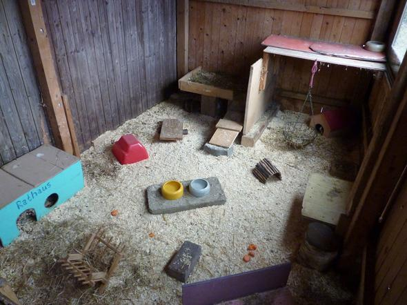 ideen f r meerschweinchen gehege gestaltung. Black Bedroom Furniture Sets. Home Design Ideas