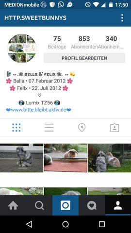 Ideen Für Neue Biografie Auf Instagram
