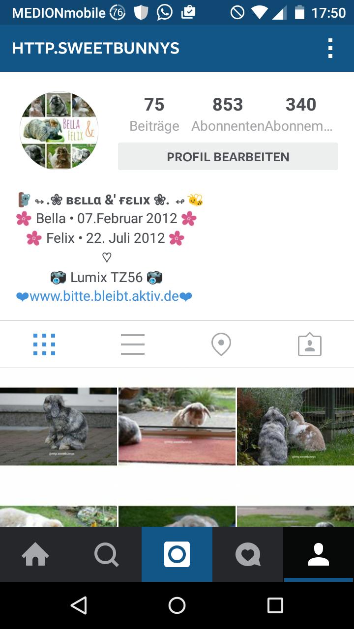 Ideen f r neue biografie auf instagram for Instagram name ideen