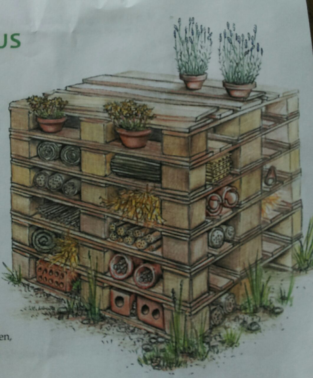 wie viel material brauche ich um ein insektenhotel zu bauen. Black Bedroom Furniture Sets. Home Design Ideas