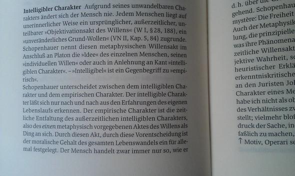 Volker Spierling kleines Schopenhauer Lexikon - (Menschen, Wissen, Verhalten)