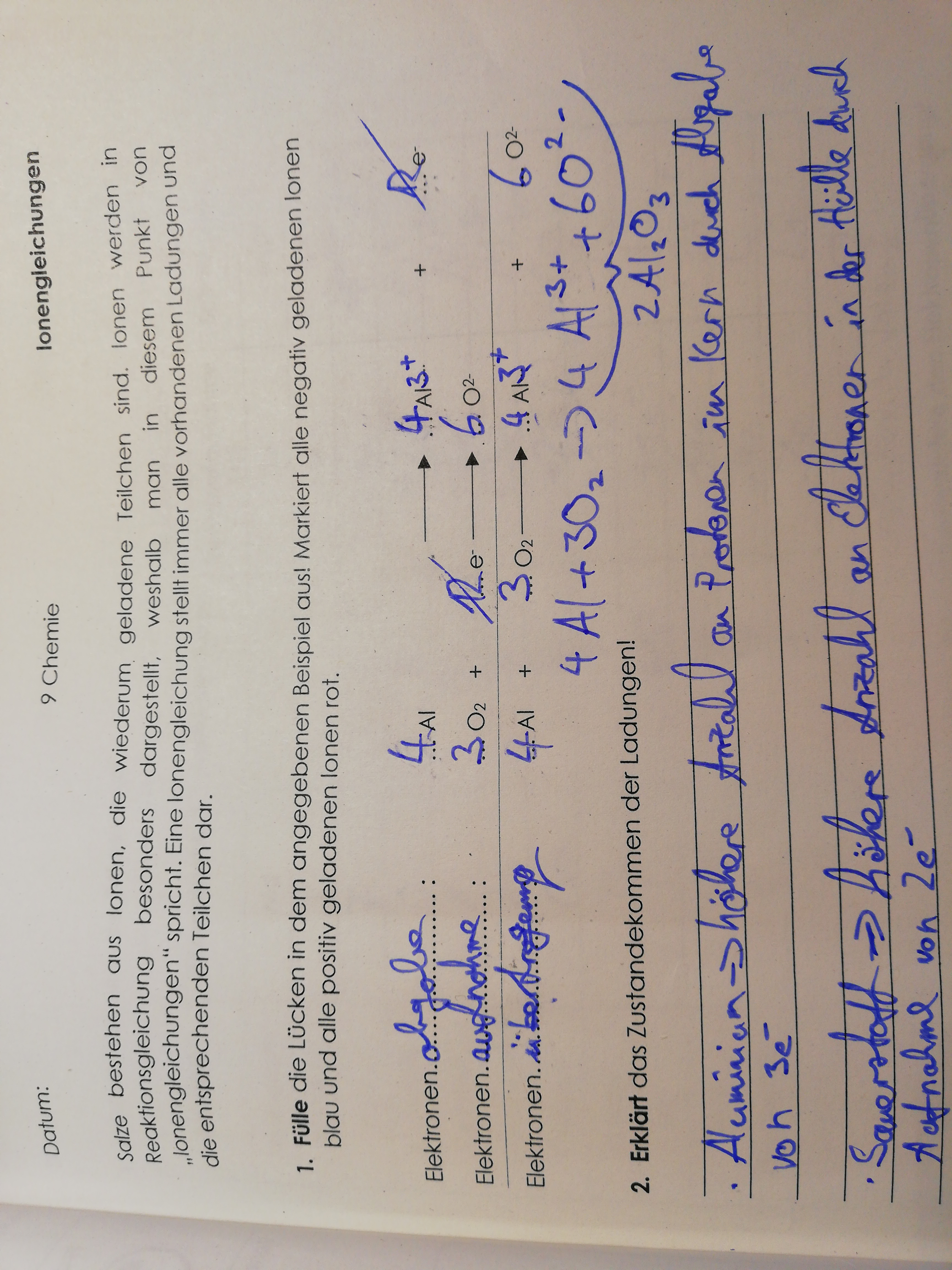 Ionengleichung in Chemie?