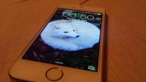 iPhone 5S Displaysprung - (iPhone, Apple, Display)
