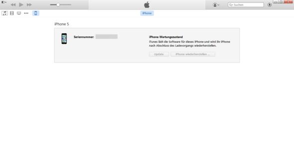 ., - (iPhone, Apple, wartungszustand)