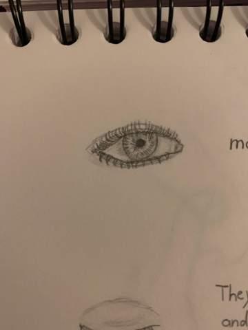 Ist das Auge gut gezeichnet/Verbesserungsvorschläge?