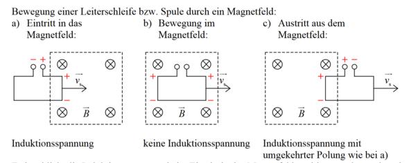 Ist das Diagramm zur Induktionsspannung richtig? (Physik ...