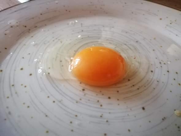 Ist das Ei frisch?