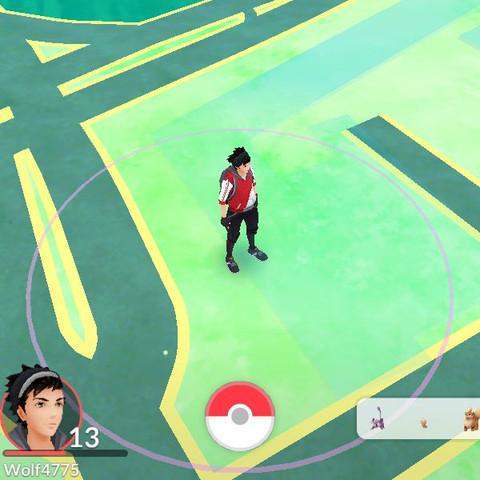 Hier die Leiste raus gezommt - (Fehler, Bug, Pokemon Go)
