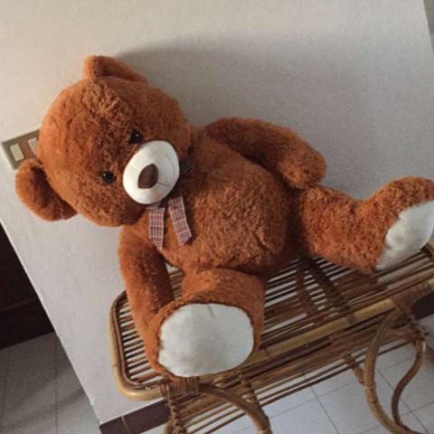 Ist das ein XXL Teddy  - (Teddy, xxl)