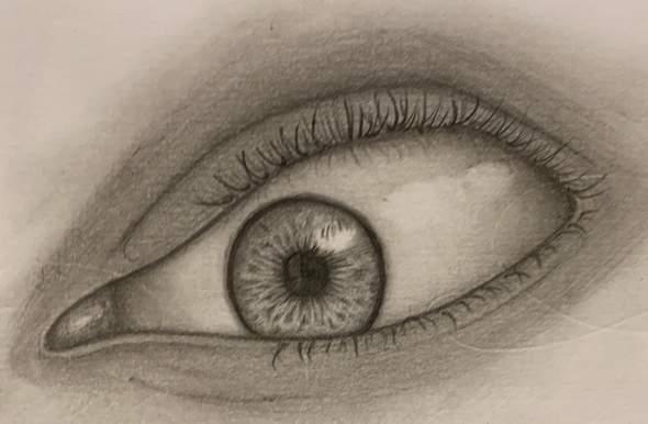 Ist das realistisch gezeichnet?