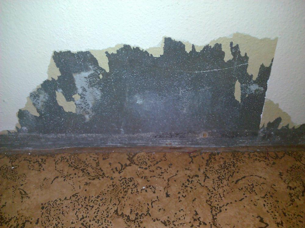 ist das schimmel hilfe handwerk wand renovieren. Black Bedroom Furniture Sets. Home Design Ideas