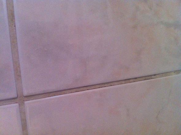 Rote Fugen Im Bad ist das schimmel in den fugen bad badezimmer dusche