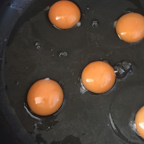 Die weise flüssigkeit - (Eier)