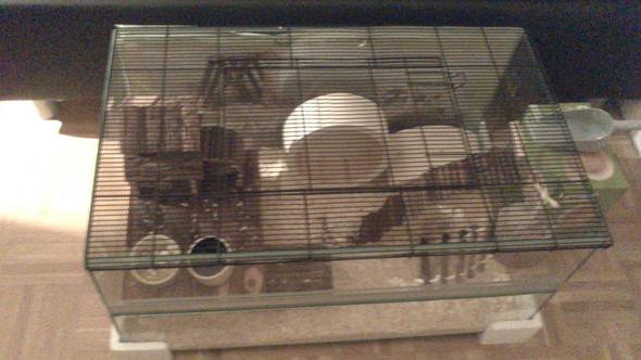 Käfig - (Haustiere, Hamster)