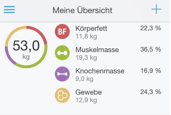 Gewicht - (BMI, koerperfett)