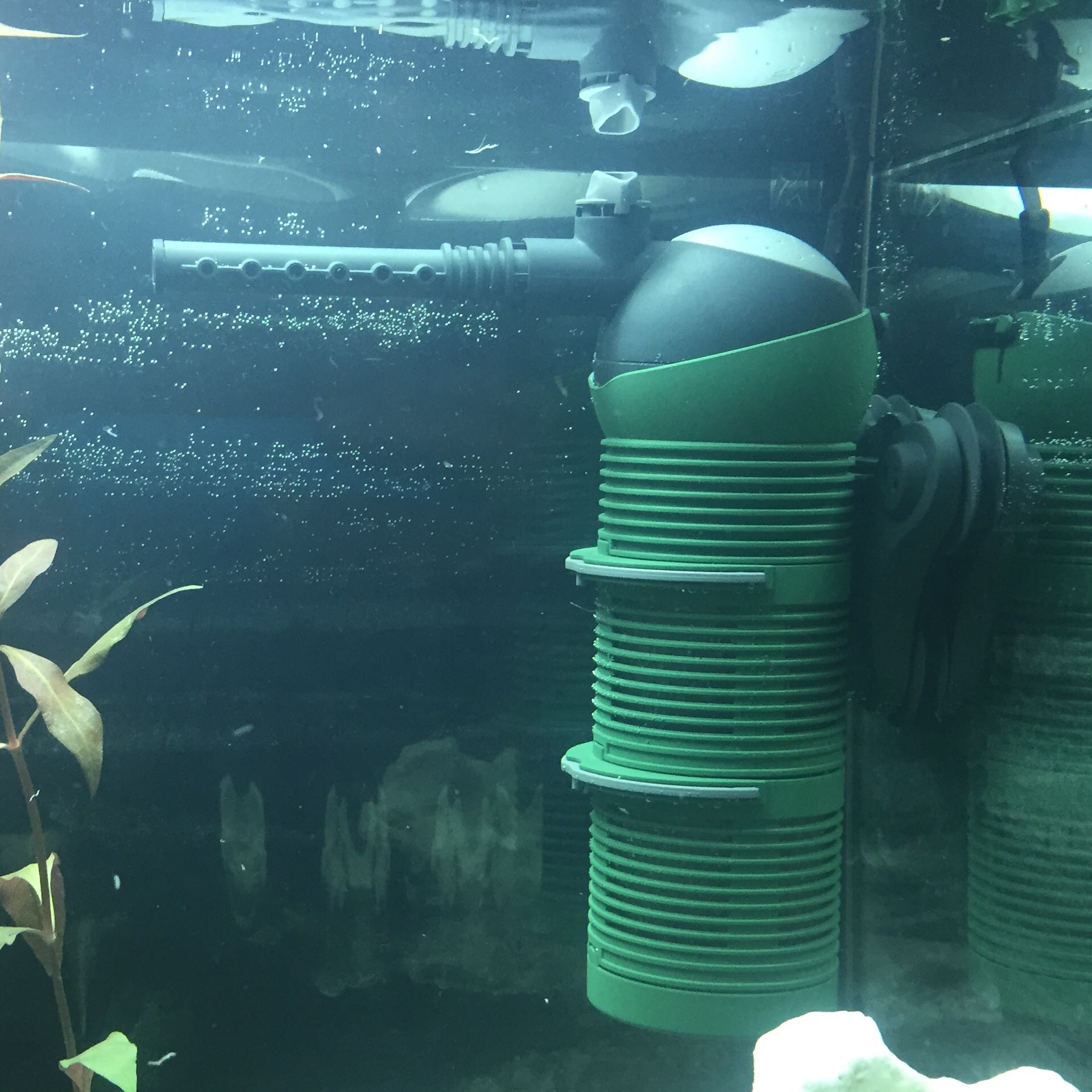 ist die pumpe richtig an der stelle aquarium noob. Black Bedroom Furniture Sets. Home Design Ideas