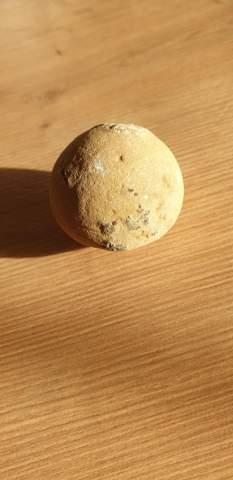 Ist dies ein versteinertes Ei?