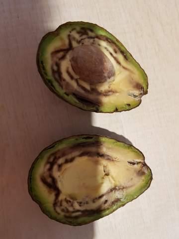 Ist diese Avocado noch essbar?