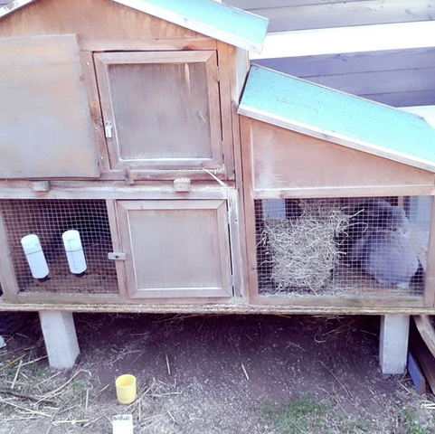 ist dieser stall wirklich gro genug f r 2 kaninchen tiere haustiere gr e. Black Bedroom Furniture Sets. Home Design Ideas