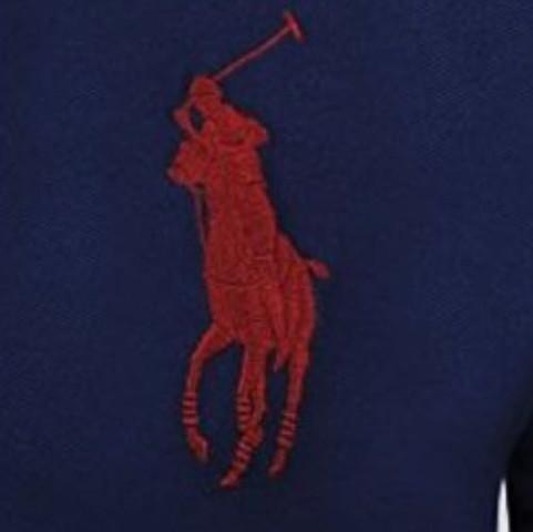 Gesticktes Pony - (Mode, ralph lauren, Poloshirt)
