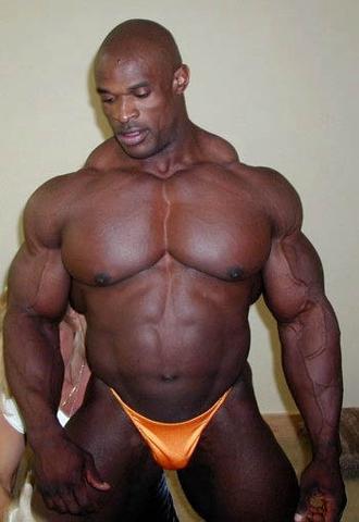 gorilla hormone steroide