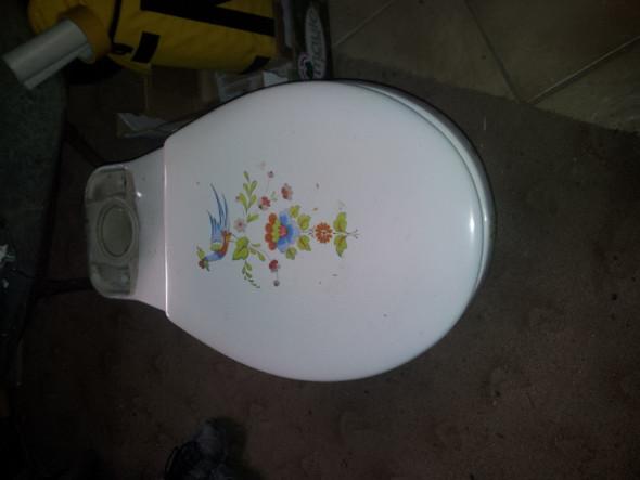 Bad - (Toilette, Badezimmer)