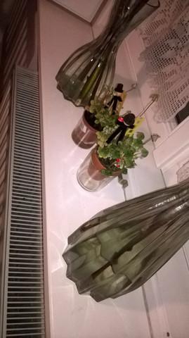 Mein Glücksklee - (Pflanzen, Heizung, Pflanzenpflege)