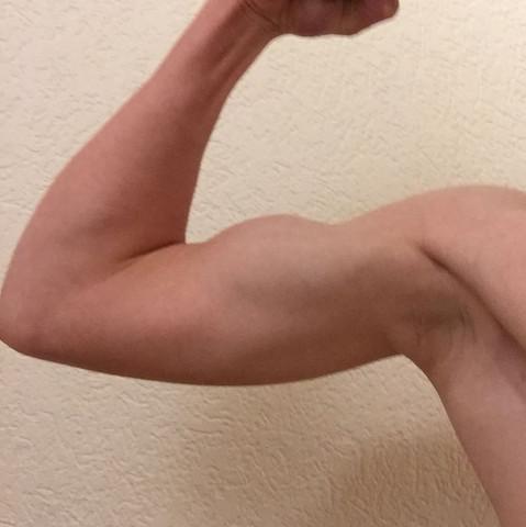 Links - (Muskelaufbau, Bizeps, trizeps)