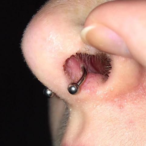 Foto - (Piercing, Nase, septum)