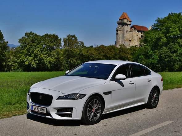 Jaguar oder Mercedes?