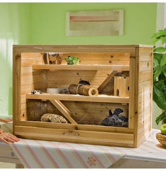 k fig gro genug f r dsungarischen zwerghamster haustiere hamster haltung. Black Bedroom Furniture Sets. Home Design Ideas