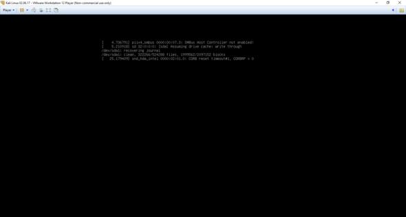 Kali Linux installieren-Fehler?