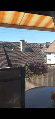 Kamin vom Nachbarhaus stinkt?