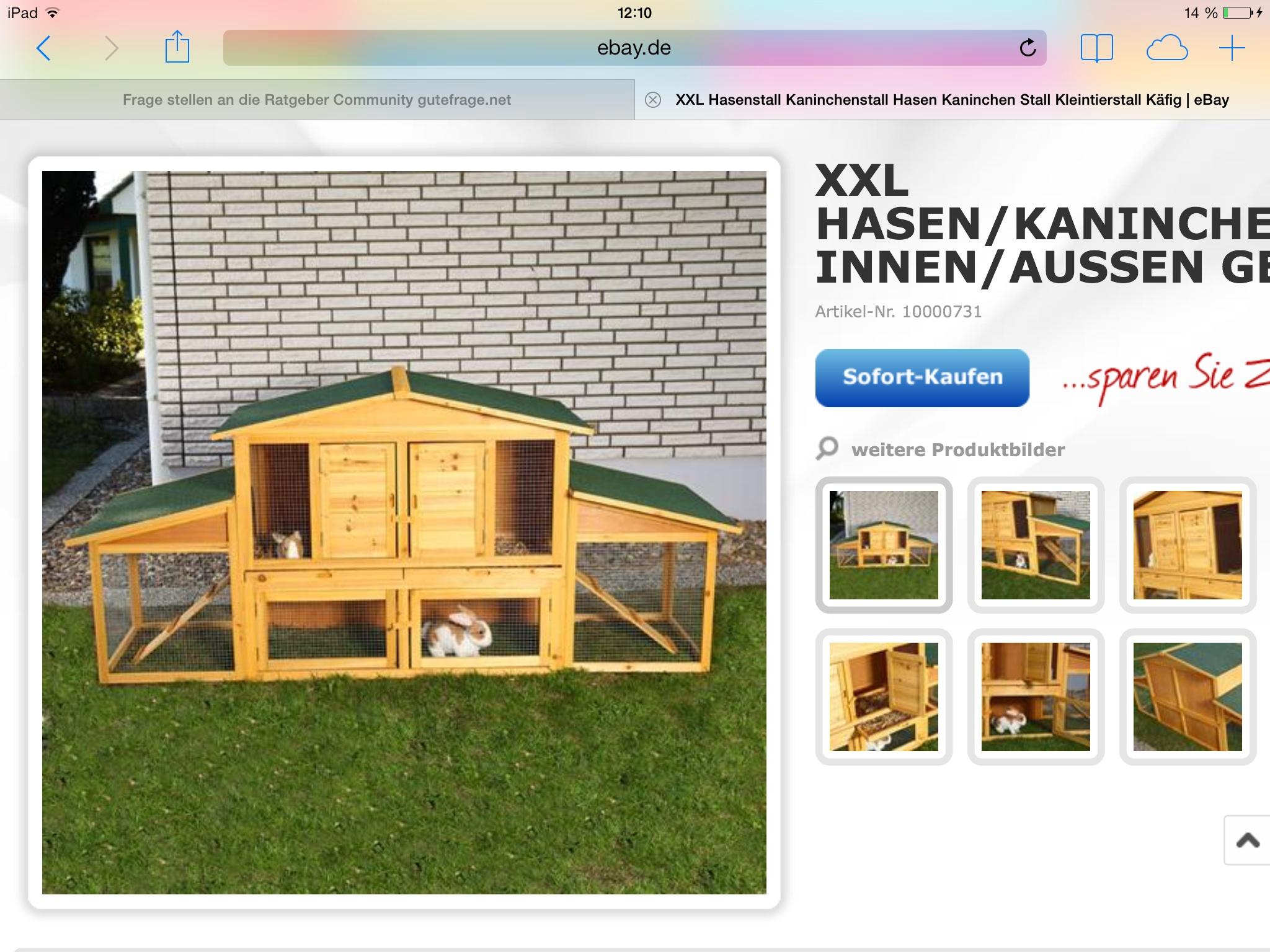 kaninchenstall im winter drausen kaninchen drau en. Black Bedroom Furniture Sets. Home Design Ideas