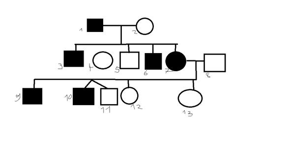 Kann ein Stammbaum unterschieldich gedeutet werden (Erbgang)?