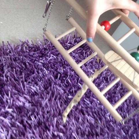 Hier entferne ich aber noch das Seil unten!!!!Und die Schaukel also ich nehme * - (Haustiere, Tod, basteln)