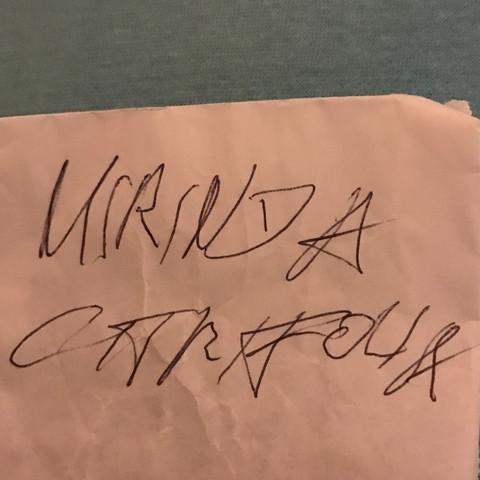 Ich kann es nicht lesen weil es hässlich geschrieben ist  - (Freizeit, Schrift, Hässliches Schrift)