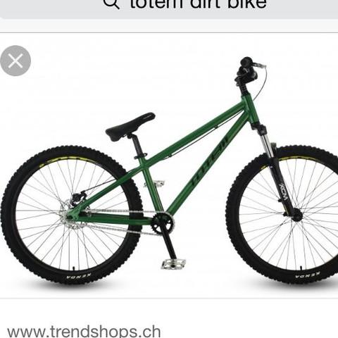 Kann man bei Dirt Bikes den sattel gerade stellen?