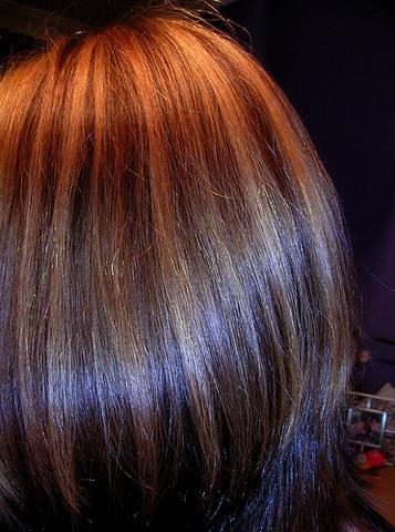Haare brechen ab nach tonung