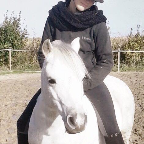 Kann mein Pony mich noch tragen ( welsh a )?