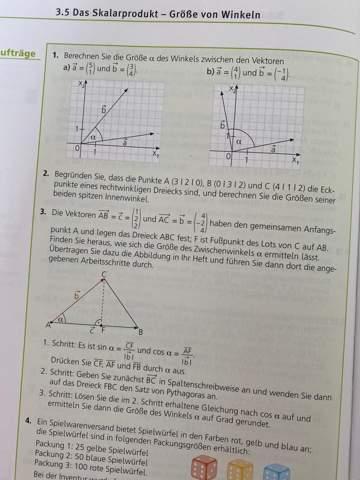 Kann mir jemand bei diesen Skalarprodukt-Aufgaben helfen?