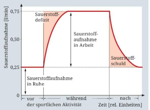 Kann mir jemand diese Grafik erklären?