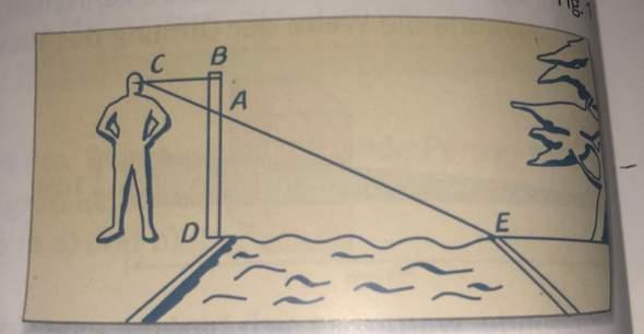 Kann mir jemand diese Matheaufgabe erklären (Strahlensätze)?